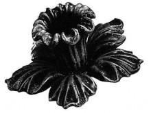 Цветок 8434Т