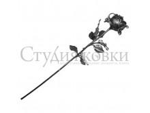 Роза SK 23.19